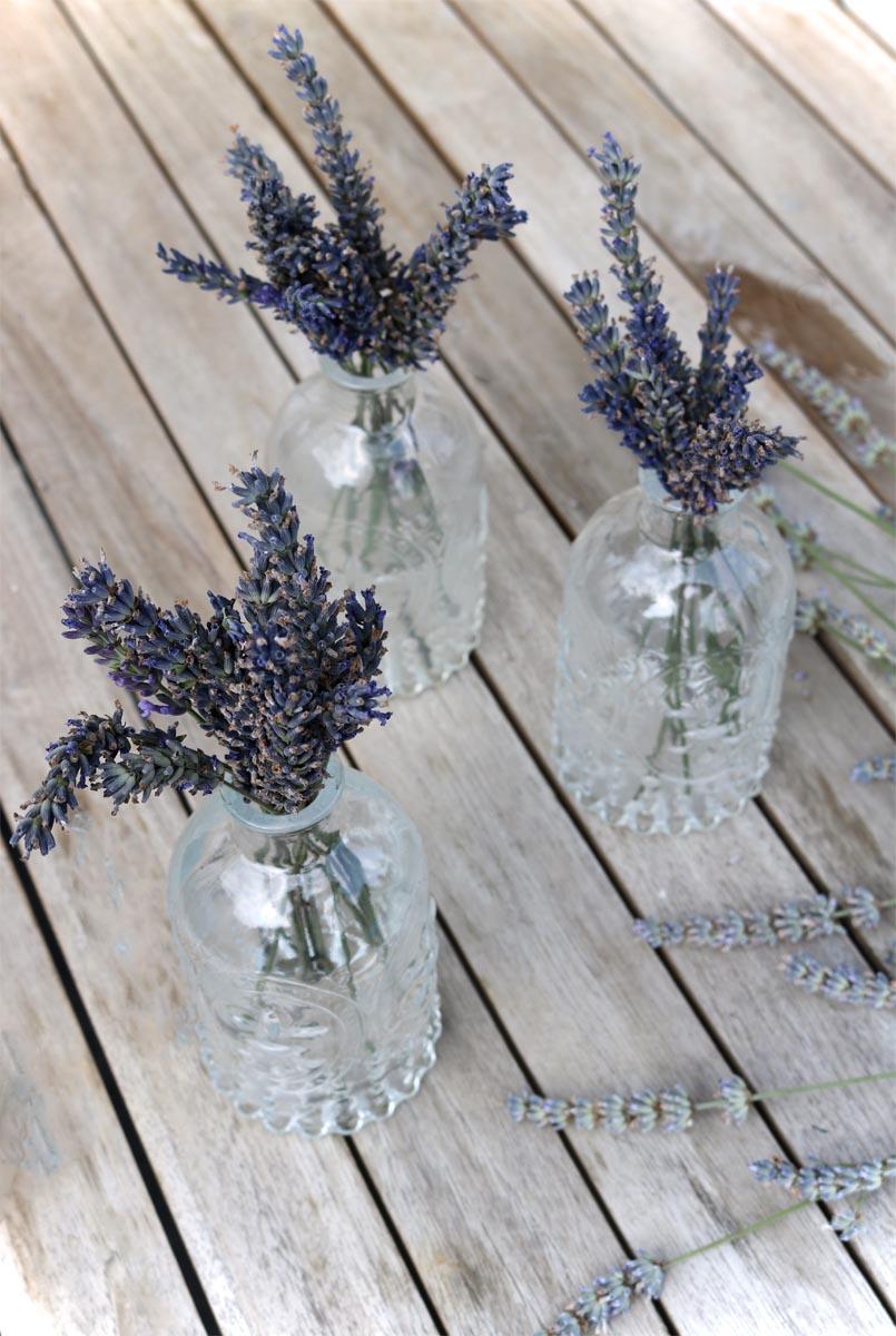 Sommerblumen Lavendel in der Vase