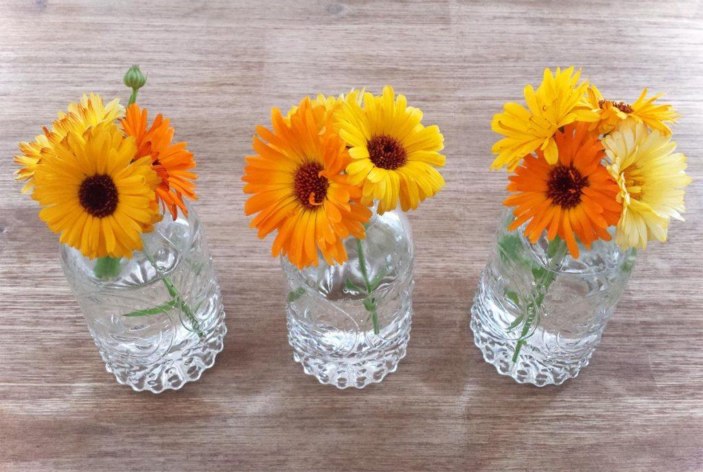 Sommerblumen Deko Ringelblumen
