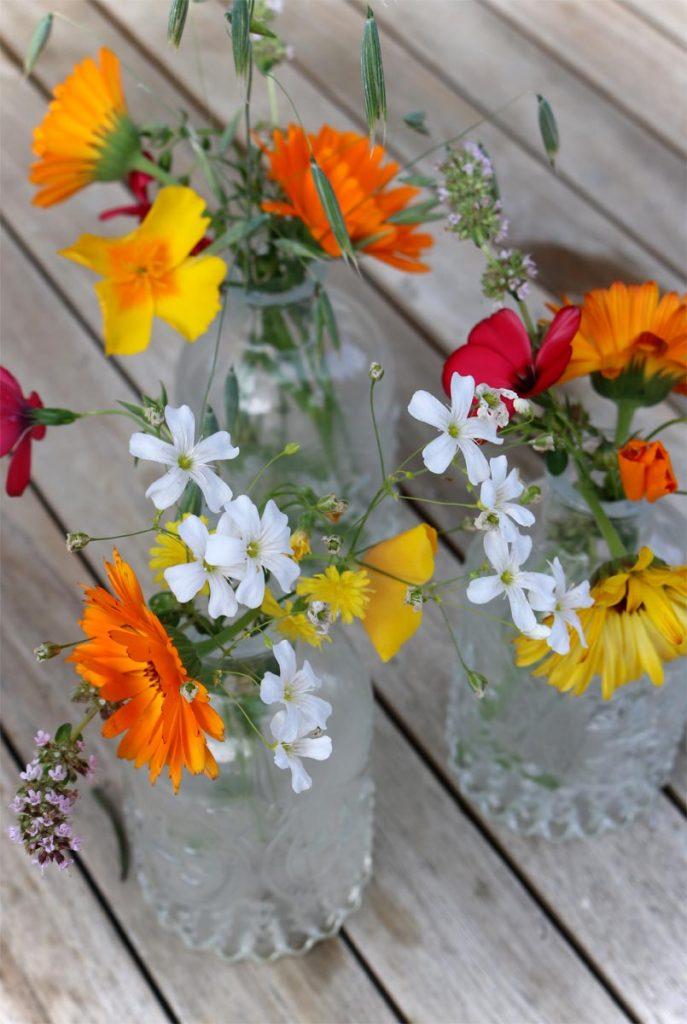 Sommerblumen in der Vase Deko