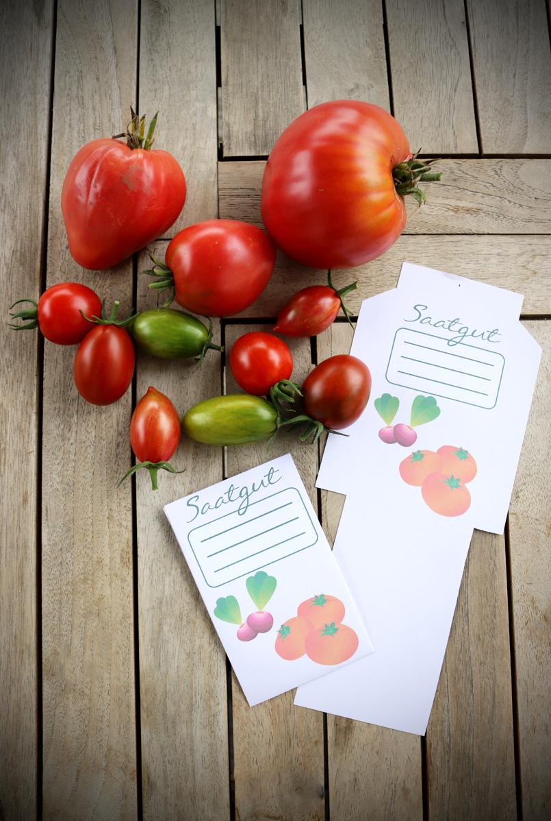 Saatgut ernten und aufbewahren - DIY Saatguttütchen