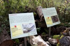 Viotope Biosphärengebiet Schwäbische Alb Umweltbildung Listhof