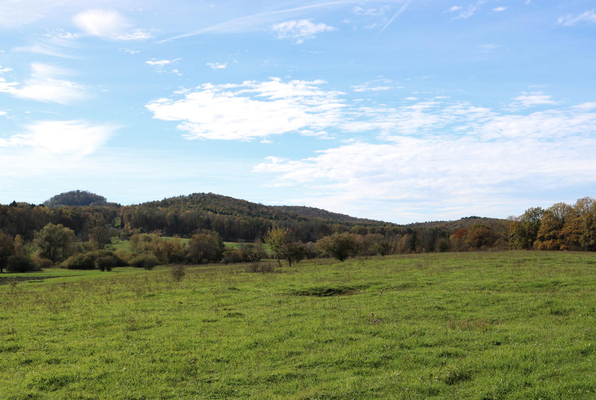 Viotope Biosphärengebiet Schwäbische Alb Wiesen und Hügel