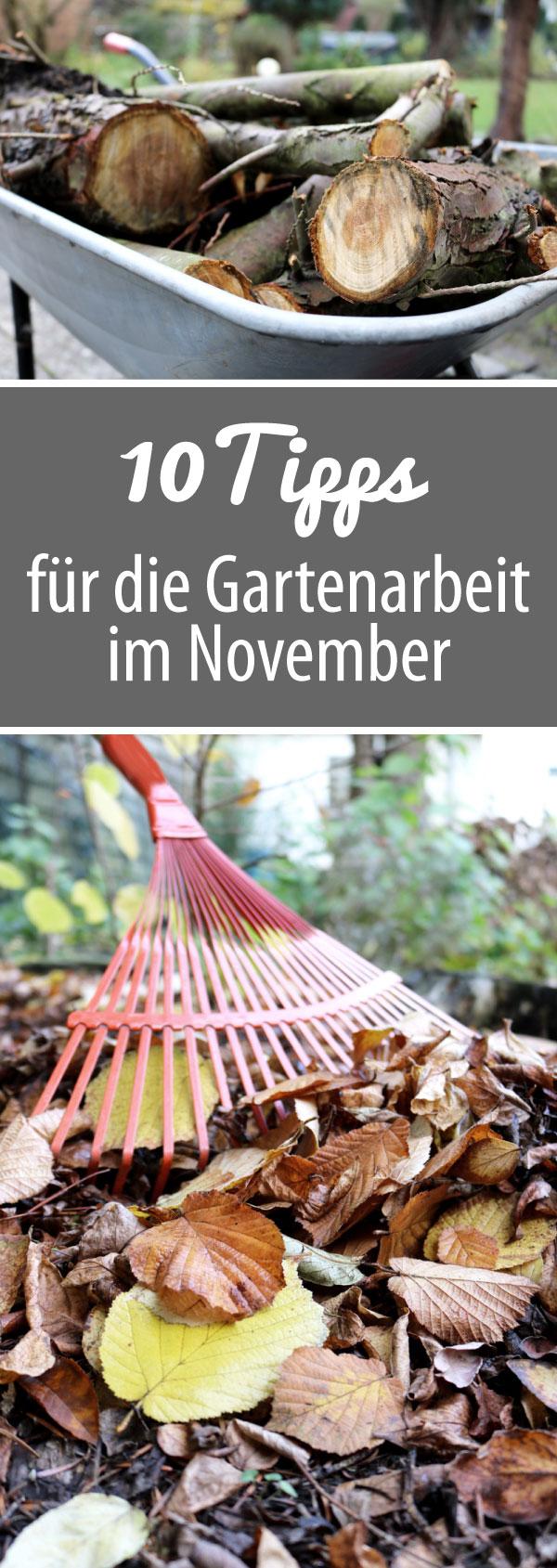 10 Tipps für die Gartenarbeit im November