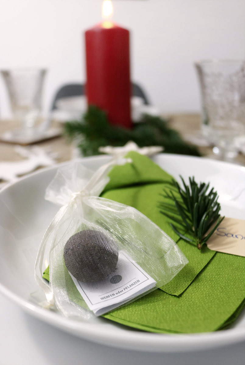 Tischdeko Weihnachten mit Seedballs im Organzabeutel