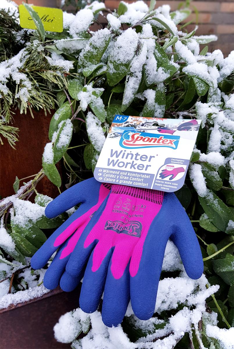 Winter Worker Spontex Gartenhandschuhe