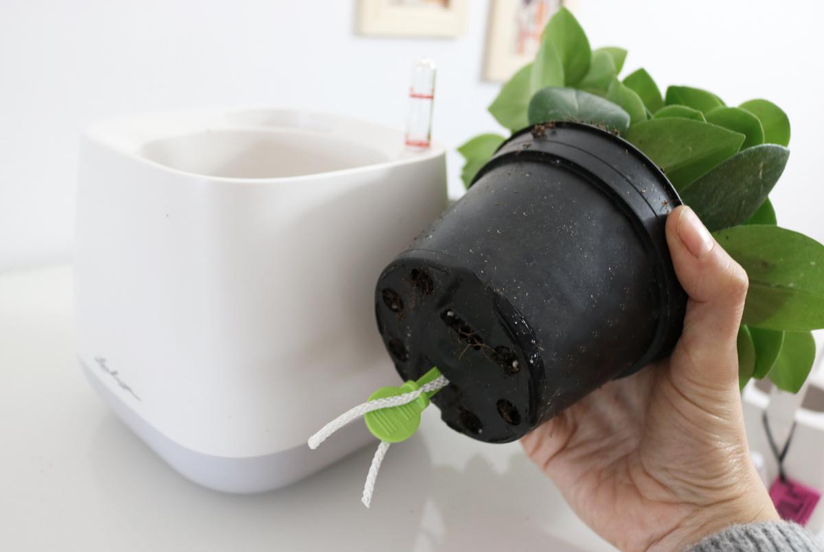 YULA Pflanzgefäß Lechuza Bewässerungssystem