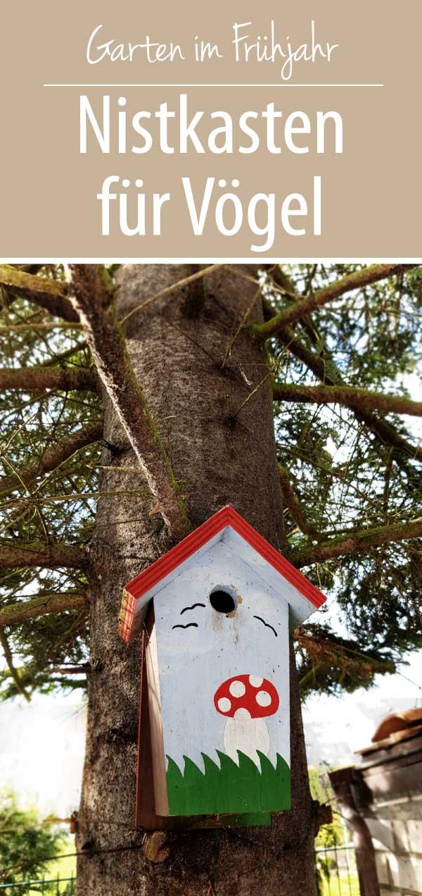 Nistkasten für Vögel | Bruthöhle für Meisen