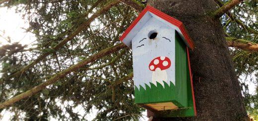 Nistkasten für Vögel Slider