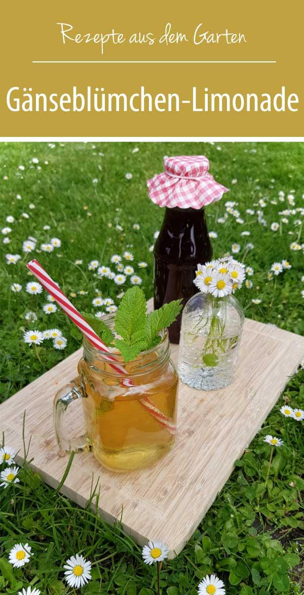 Gänseblümchen-Limonade Rezepte aus dem Garten