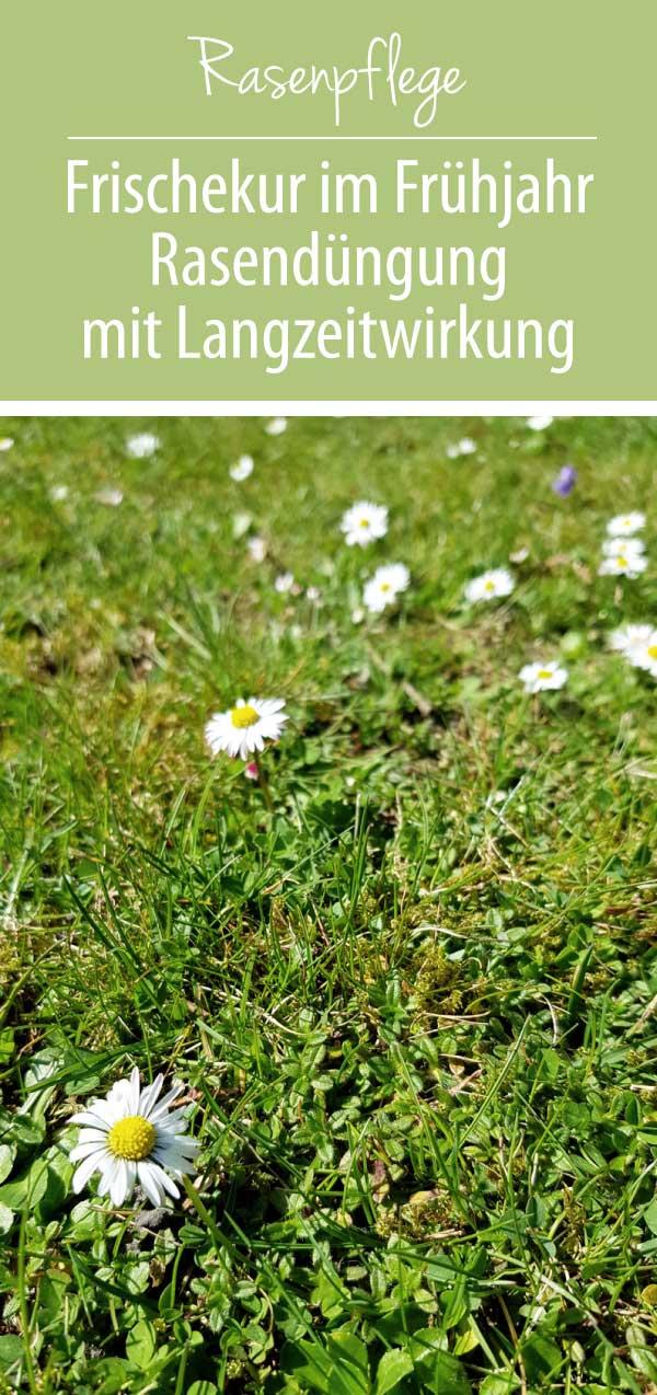 Rasenpflege-Rasendüngung-mit-Langzeitwirkung-Pinterest