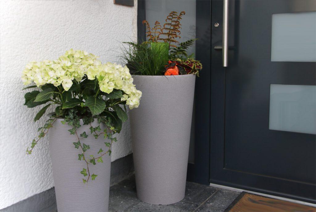 Scheurich Pflanzideen für den schattigen und sonnigen Hauseingang Bepflanzung Schatten Scheurich