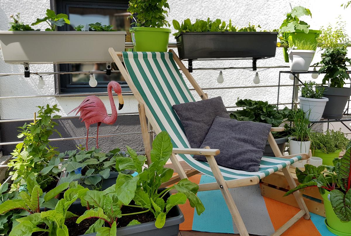Grüneliebe City Garden mit EMSA