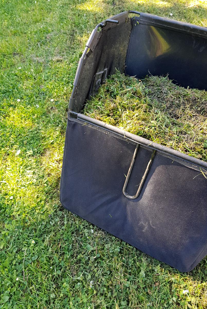 Rasenpflege Vertuktieren Compo Saat After Moos Rasen