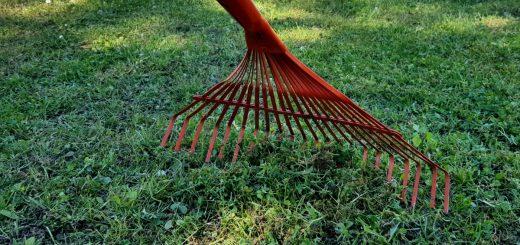Rasenpflege Vertuktieren und Nachsäen Compo After Moos Rasen