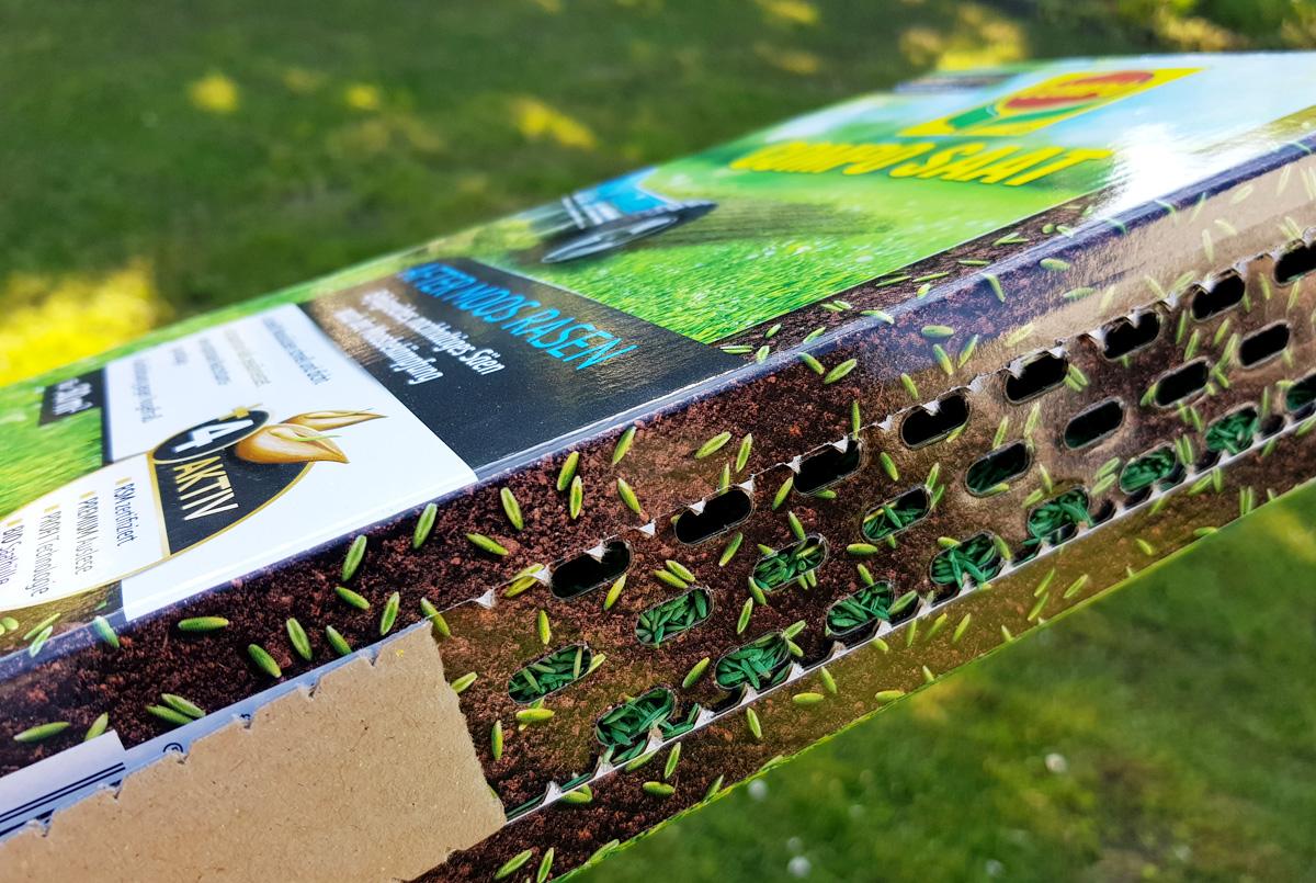 Rasenpflege Vertuktieren und Nachsäen Compo Saat After Moos Rasen