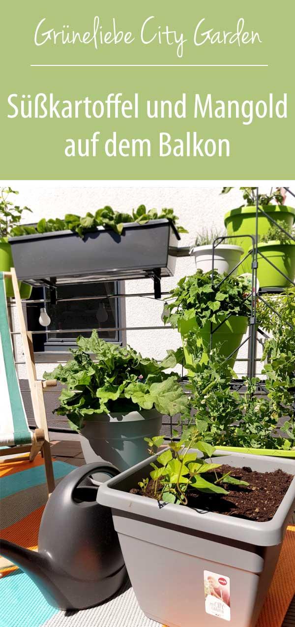 Süßkartoffel und Mangold auf dem Balkon - Grüneliebe City Garden Emsa