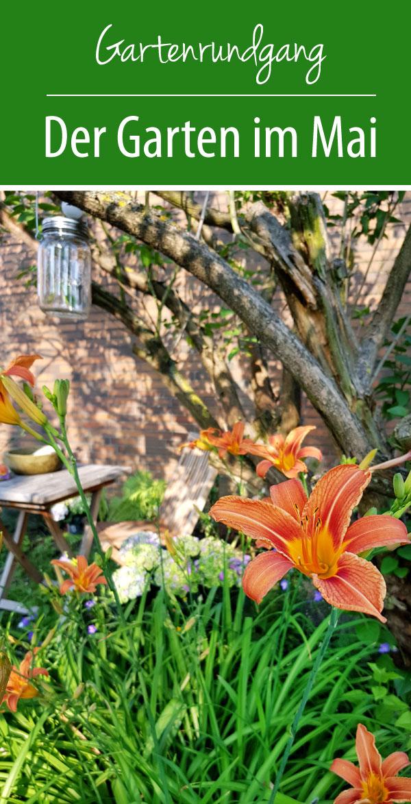 Gartenrundgang - Garten im Mai