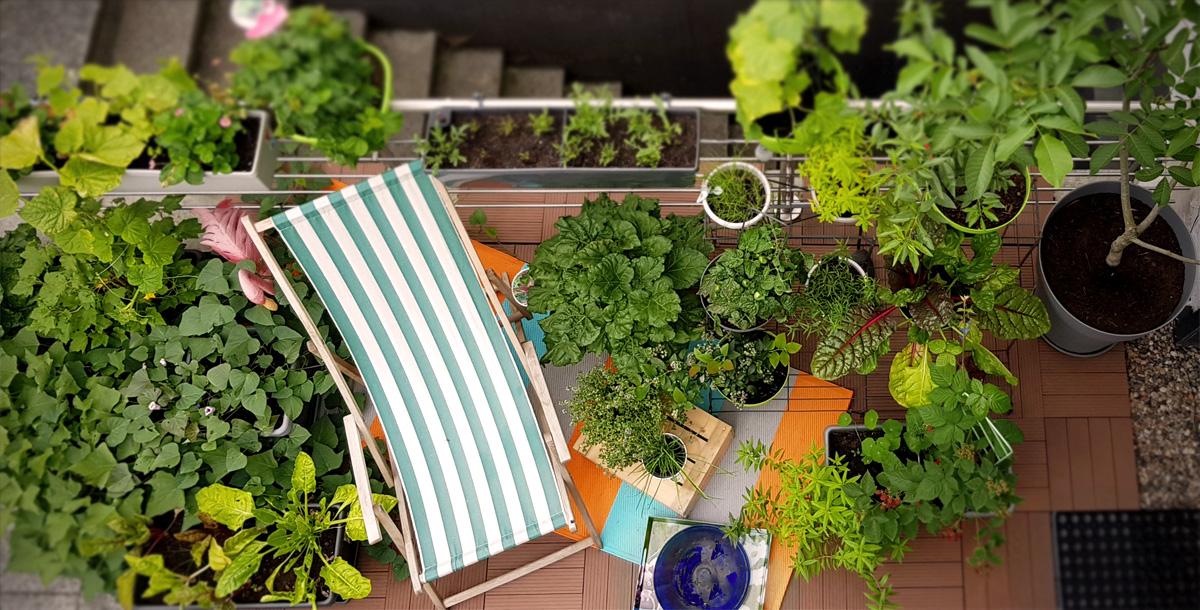 Werbung // Grüneliebe City Garden