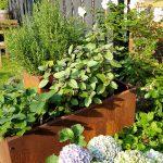 Kräuterspirale - Garten im Mai