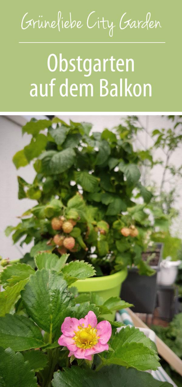 Obstgarten auf dem Balkon EMSA Grüneliebe City Garden