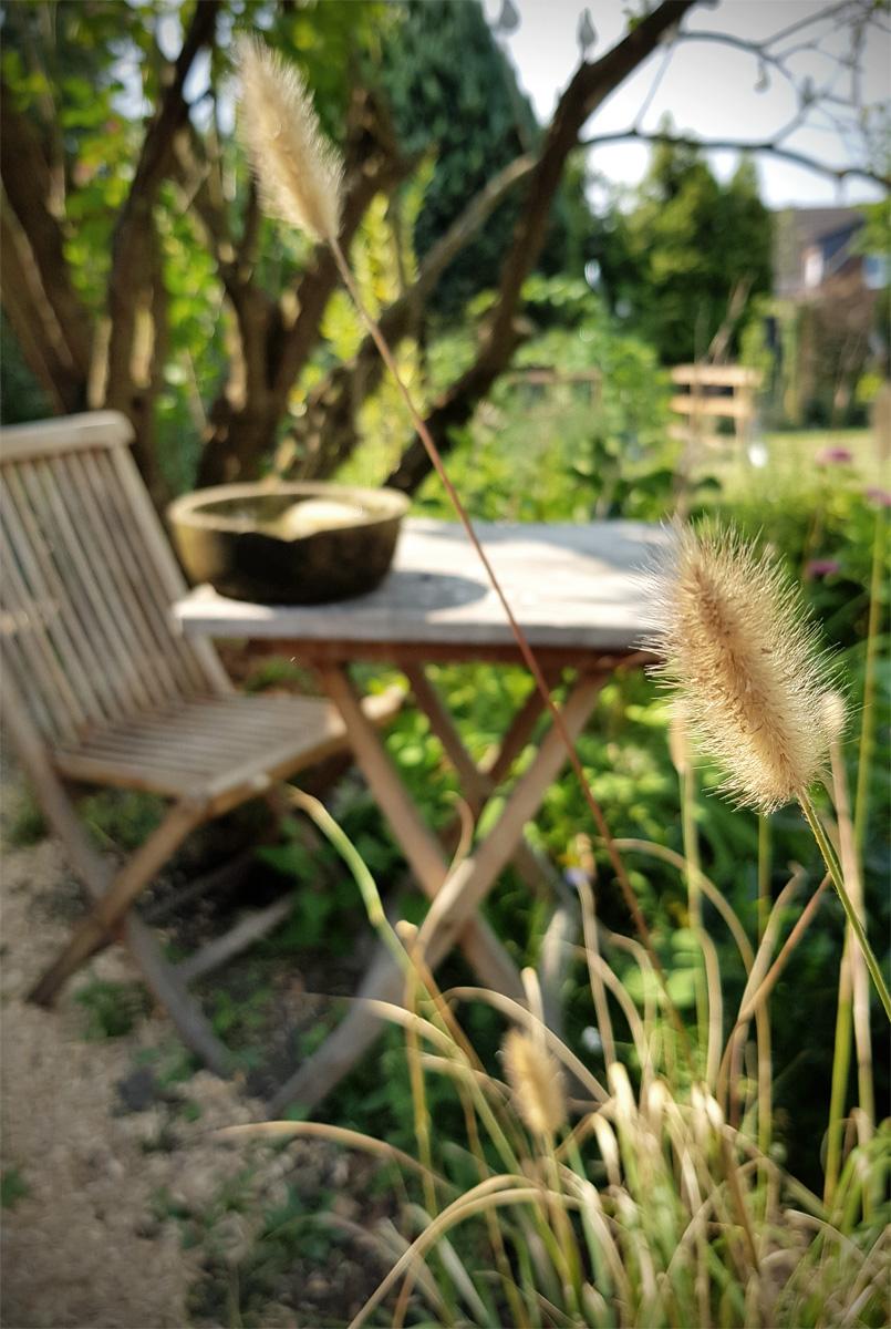 Wasser für Vögel und Insekten - Insektentränke DIY