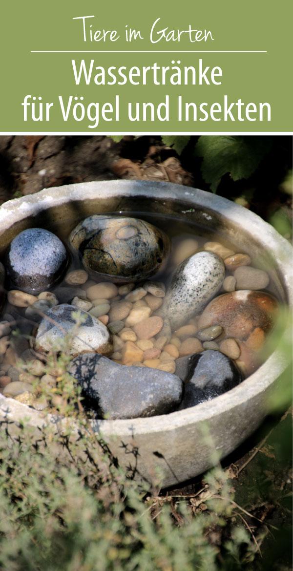 Wassertränke für Vögel und Insekten - DIY Insektentränke