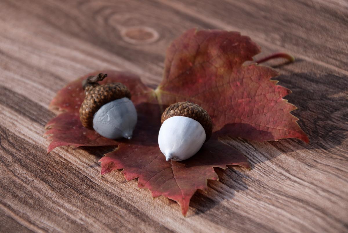 Kranz aus Eicheln DIY Herbstdeko