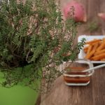 Süßkartoffel-Pommes mit Parmesan-Thymian-Kruste