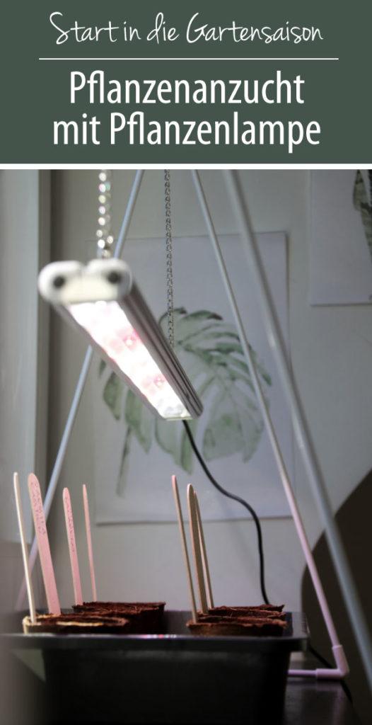 Anzucht Versuch mit Pflanzenbeleuchtung von Venso EcoSolutions