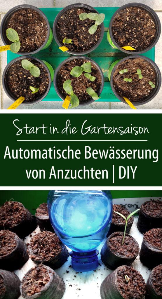 Automatische Bewässerung von Anzuchten | DIY