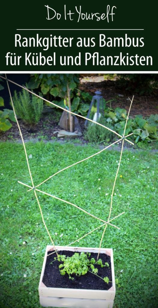 Do It Yourself - Rankgitter aus Bambus für Kübel und Pflanzen