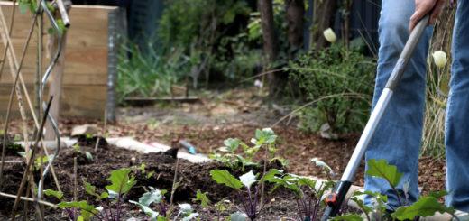 Werbung / Grubber, Gartenhacke, Kleinrechen Welche Gartengeräte benötigt man im Gemüsegarten? Gärtnern mit dem Gardena Combisystem