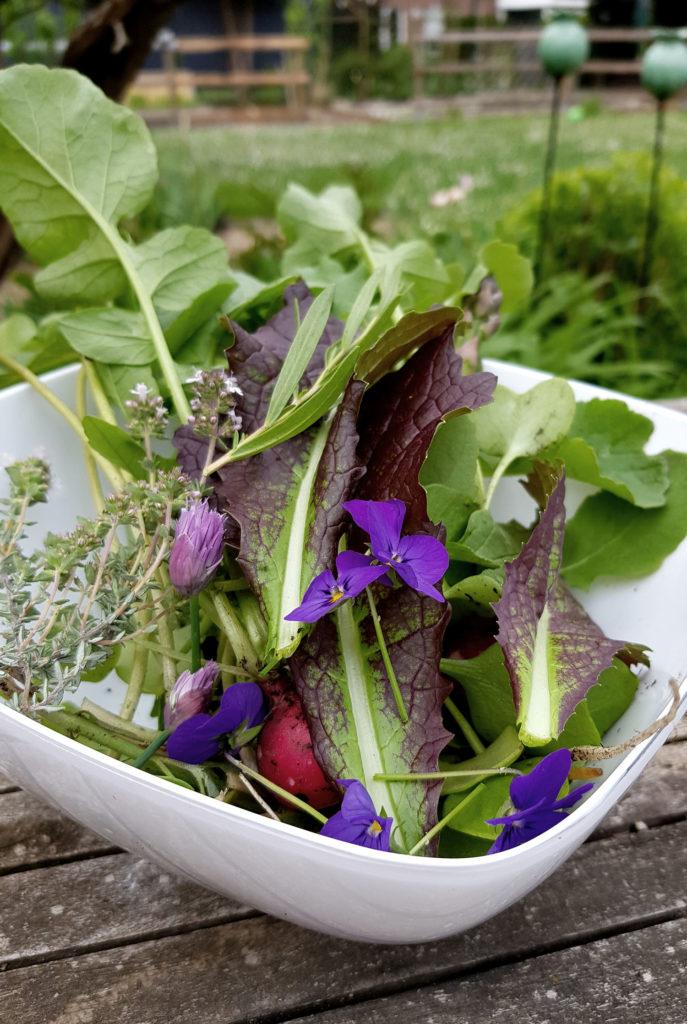 Zutaten aus dem Garten für Spargelsalat