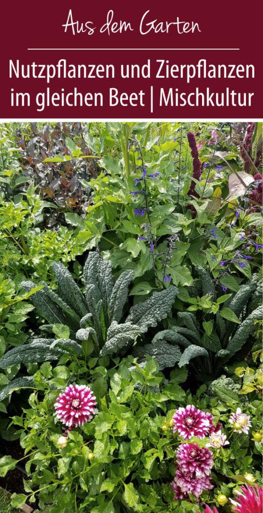 Nutzpflanzen und Zierpflanzen im gleichen Beet - Mischkultur mal anders!
