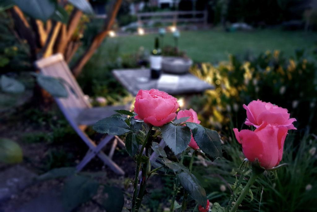 Lichtplanung im Garten ohne Erdarbeiten und ohne Fachkentnisse