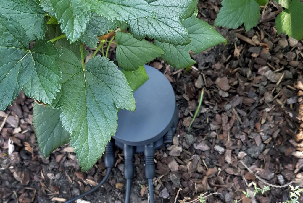 Lichtplanung im Garten mit BEGA Plug and Play Extender