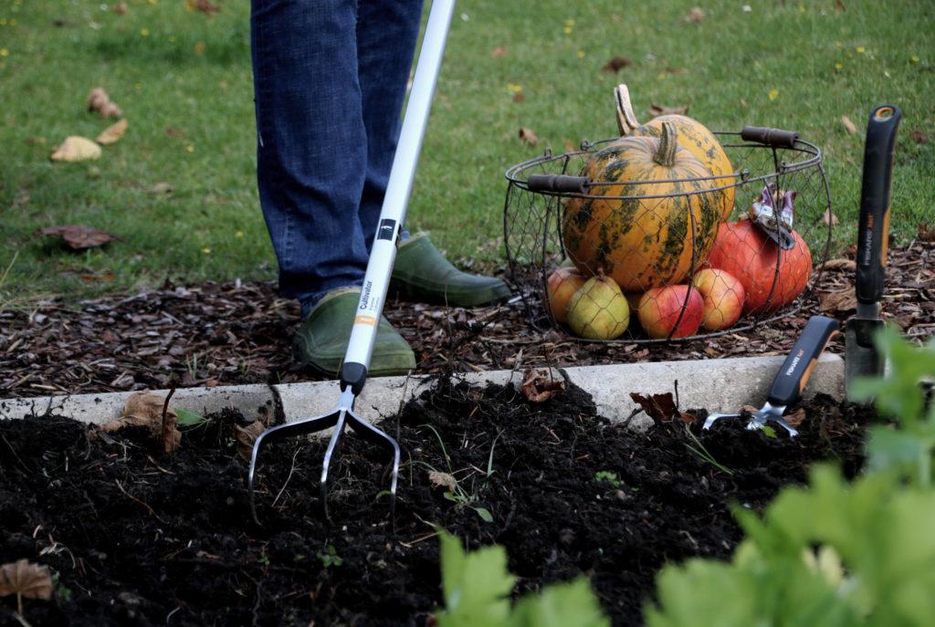 Gemüsebeet winterfest machen - Grubber zum Lockern von Erde