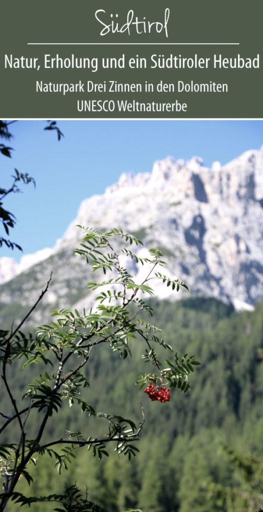 Dolomites Spa Resort Naturpark Drei Zinnen