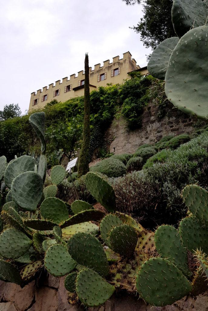 Verbotene Garten - Gärten von Schloss Trauttmansdorff