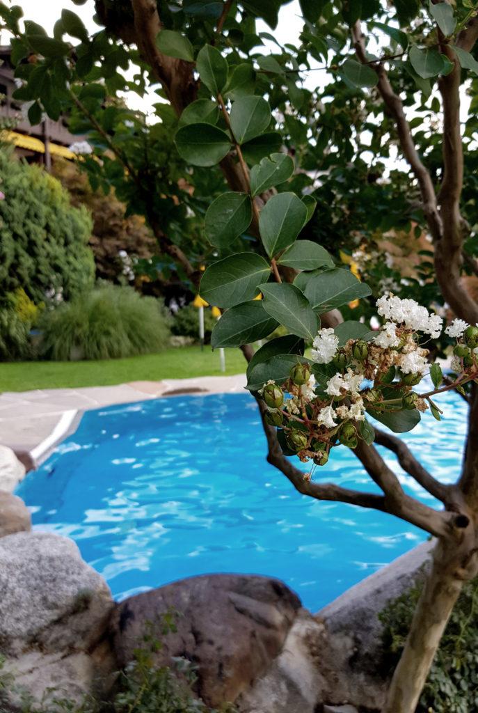 A true garden experience Hotel Wiesenhof