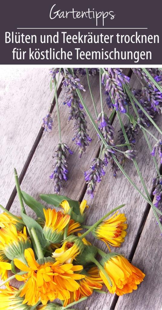 Blüten und Teekräuter trocknen für köstliche Teemischungen