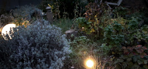 Gartenbeleuchtung im Winter BEGA Plug & Play Winter
