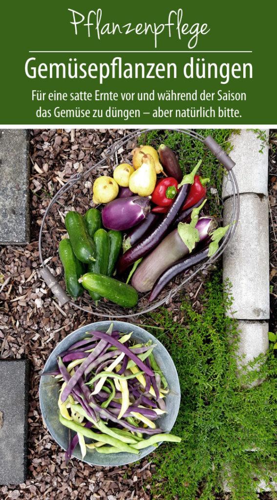 Für eine satte Ernte empfiehlt es sich vor und während der Saison das Gemüse zu düngen – aber natürlich bitte.