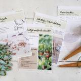 Anzucht-Guide für Gemüsepflanzen [Die Basics für die Anzucht - Kostenloser Download]