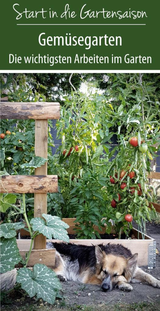 Gemüsegarten - Die wichtigsten Arbeiten im Garten