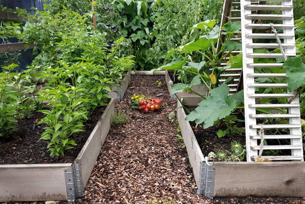 Pflanzpläne für Palettenbeete im Gemüsegarten