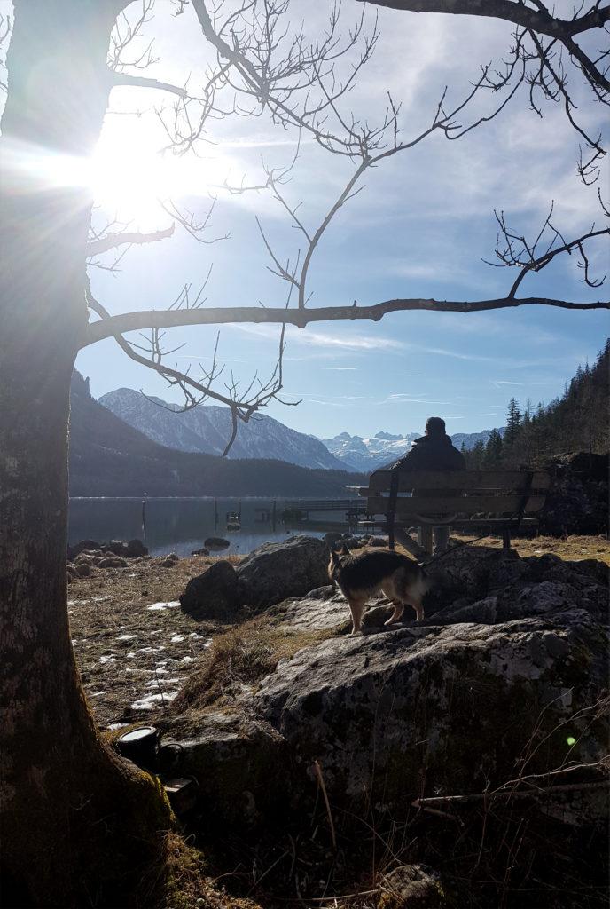 Altausseer See - Wanderweg mit Hund - Steiermark Österreich - James Bond Specter Drehort