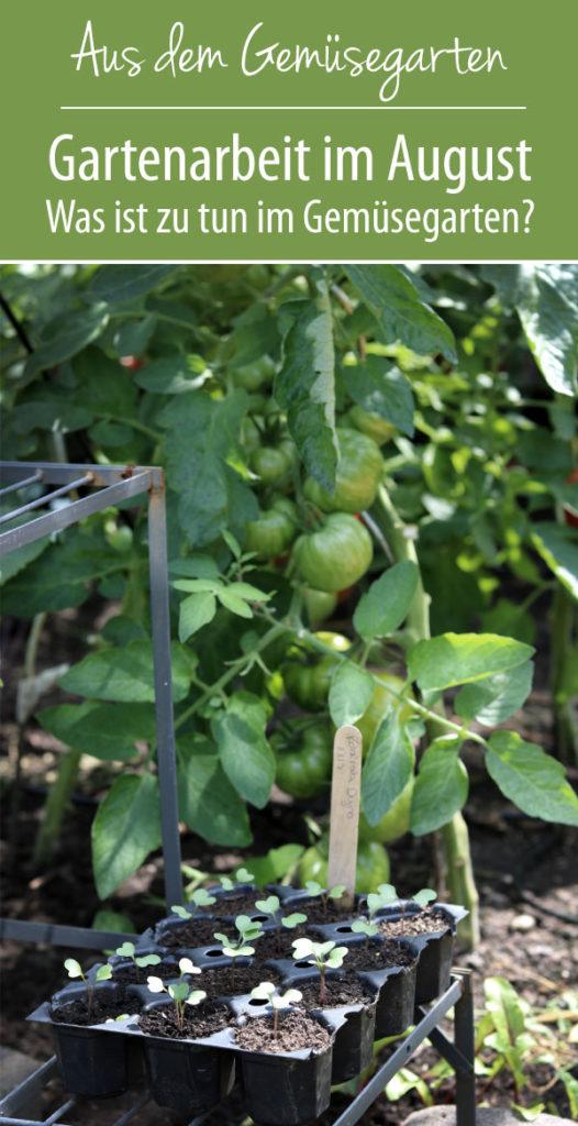 Gartenarbeit im August - Was ist zu tun im Gemüsegarten?