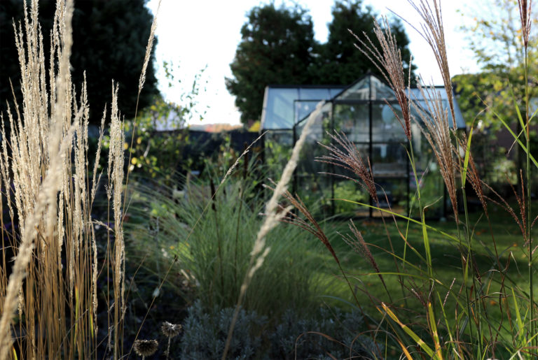 Gartenfreude Garten Grüneliebe