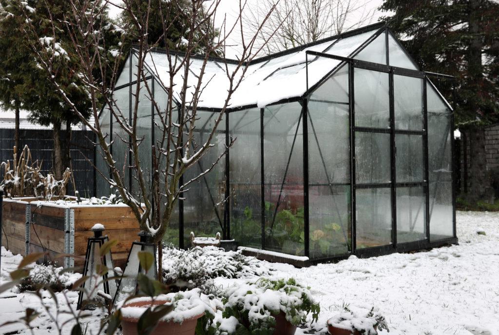 Gewächshaus im Winter unbeheizt oder beheizt